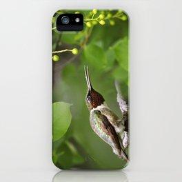 Hummingbird Hiding iPhone Case