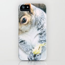 Squirrely Snacks iPhone Case