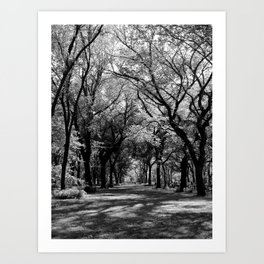 New York 5 Art Print