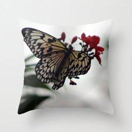 Elegant Butterfly Throw Pillow