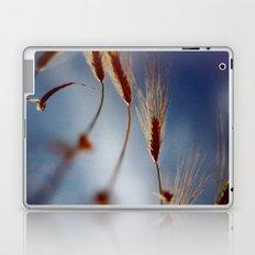 |||||||||||||||||||||| Laptop & iPad Skin
