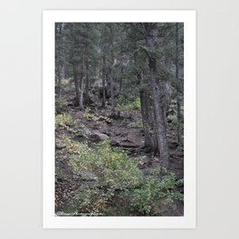 Forest Hunting Art Print