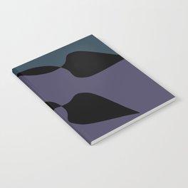 Pendulums Notebook