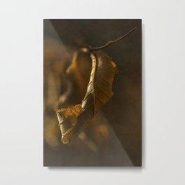 Autumn #12 Metal Print