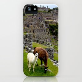 The Inhabitants of Machu Picchu iPhone Case