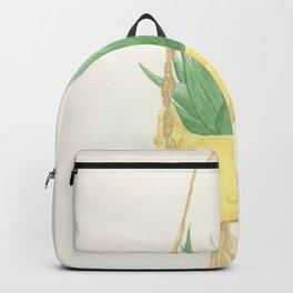 Macrame Succulent Backpack