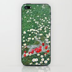 Daisies & Candies iPhone & iPod Skin