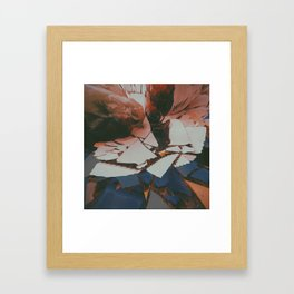 Lychee Mosaic Framed Art Print