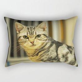 an arrogant silver tabby Rectangular Pillow