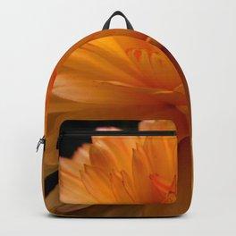 Open Backpack