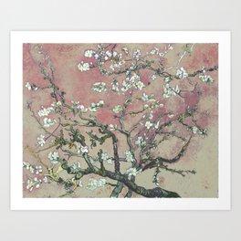 Almond Blossom - Vincent Van Gogh (pink pastel and cream) Art Print