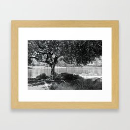 tree by the lake Framed Art Print