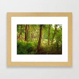 Surreal woodland Framed Art Print