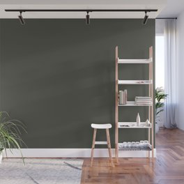 Dark Hunter Green Solid Color Pairs with Sherwin Williams Alive 2020 Forecast Color - Ripe Olive SW6 Wall Mural