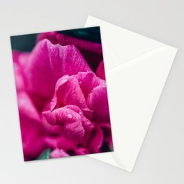 The Petal's Edge Stationery Cards