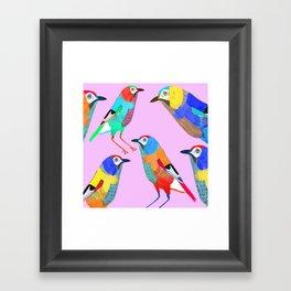 Birds of Paradise. Framed Art Print