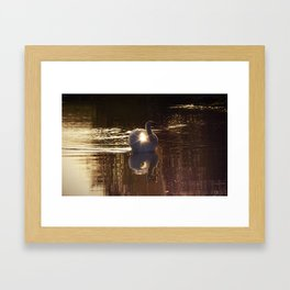 Mystical Swan Framed Art Print