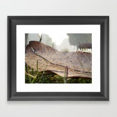 Dew drops on a fallen leaf Framed Art Print