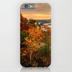 Pure gold iPhone 6s Slim Case
