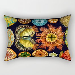 Sea Squirts (Ascidiacea) by Ernst Haeckel Rectangular Pillow