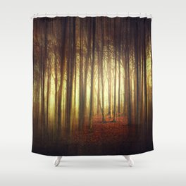 passage into the light Shower Curtain