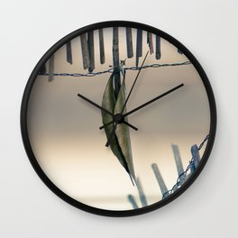 Entrapped Wall Clock