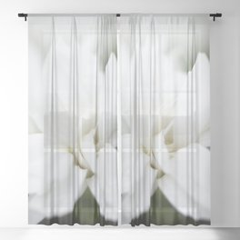 Snow White Flowers on a Dark Background #decor #society6 #buyart Sheer Curtain
