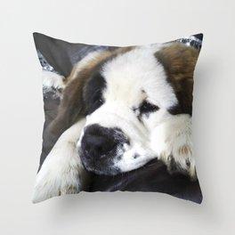 Cute saint bernard puppy relaxing Throw Pillow