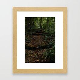 Stairs in Wonderland Framed Art Print
