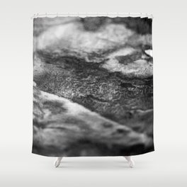 The Catherine / Charcoal + Water Shower Curtain