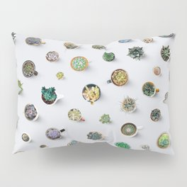 Coffee time. Cactus and succulents pattern Pillow Sham