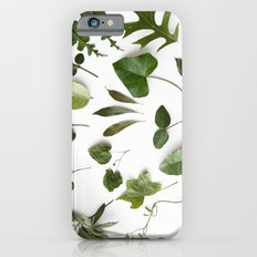 HERBARIUM iPhone 6 Slim Case