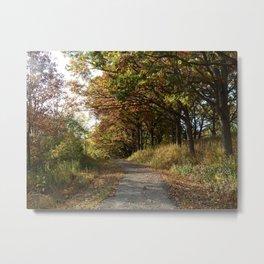 Nature Walk Metal Print