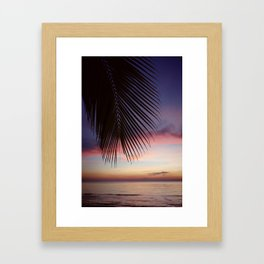 Paradise Palm Sunset Framed Art Print