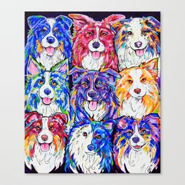 Collies in Colour Canvas Print