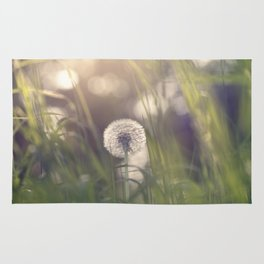 Dandelion blossom defocused in garden Rug
