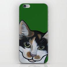 Callie the Calico iPhone & iPod Skin