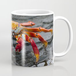 Sally Lightfoot Crab Coffee Mug