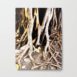 Banyan Roots Metal Print