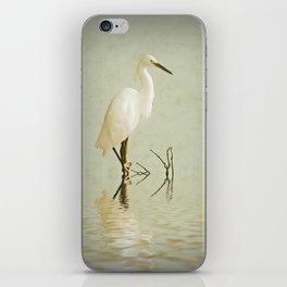 Little Egret iPhone Skin