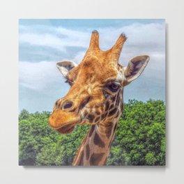 Painted Giraffe Metal Print