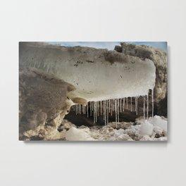T Rex in Ice Metal Print