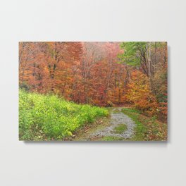 Vibrant Autumn Trail Metal Print
