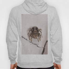 Stalking prey Hoody
