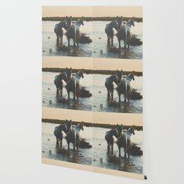 Camargue Horses III ... Wallpaper