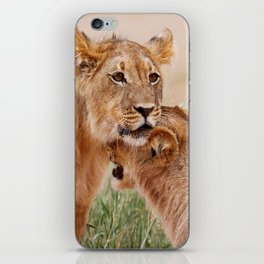 Two young lions - Africa wildlife iPhone Skin