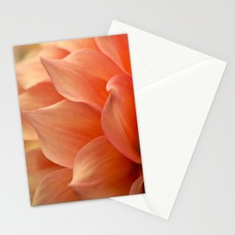 Gentle Petals Stationery Cards