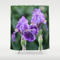 iris Shower Curtains featuring Iris by IowaShots