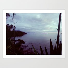 New Caledonia Art Print