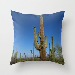 In The Sonoran Desert Throw Pillow